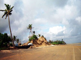 image of Coastal west Bengal Tour