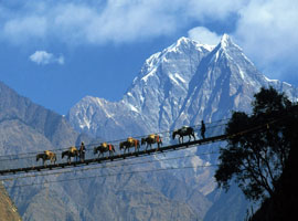 golden nepal Tour