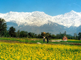 image of himachal Tour