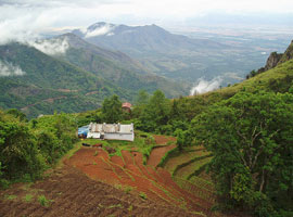 image of Kodaikanal hills Tour