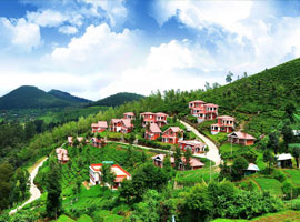 image of Ooty Tour